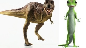 rex before&after